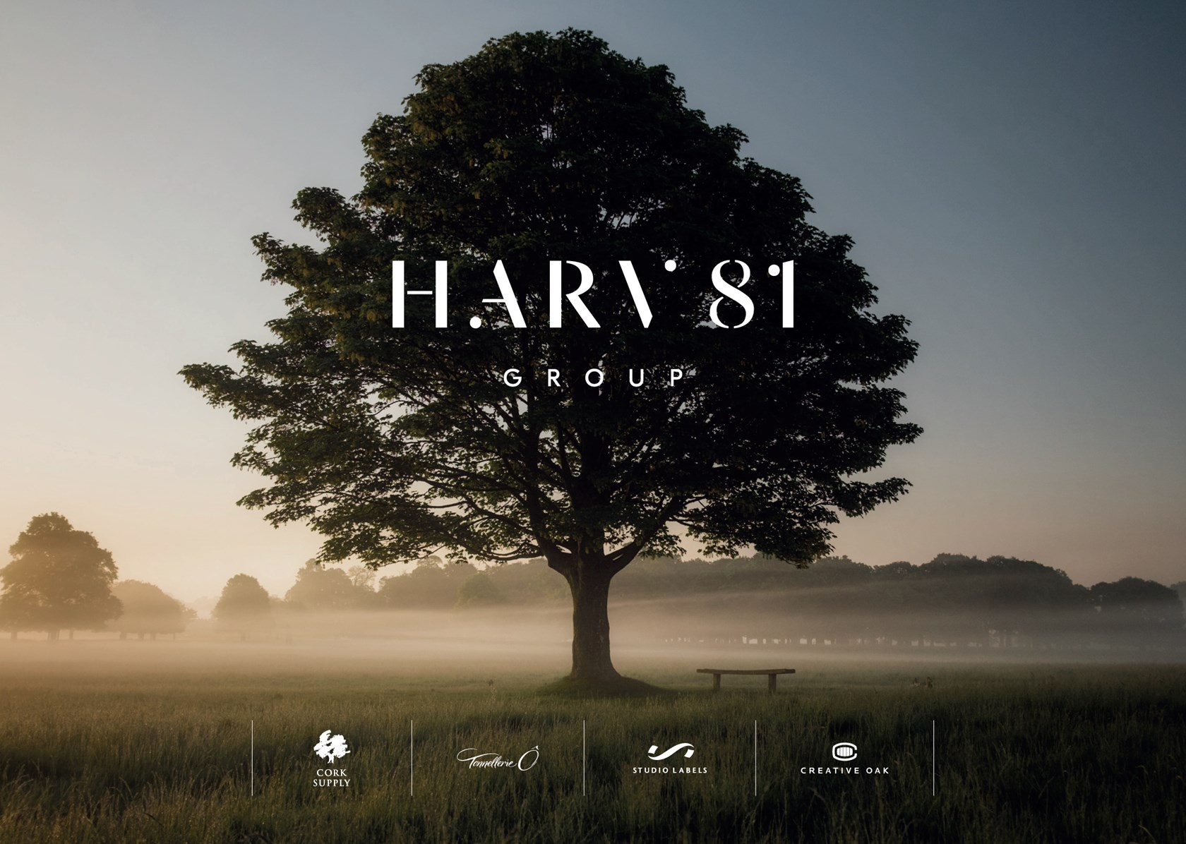 Harv81group Banners Website 13