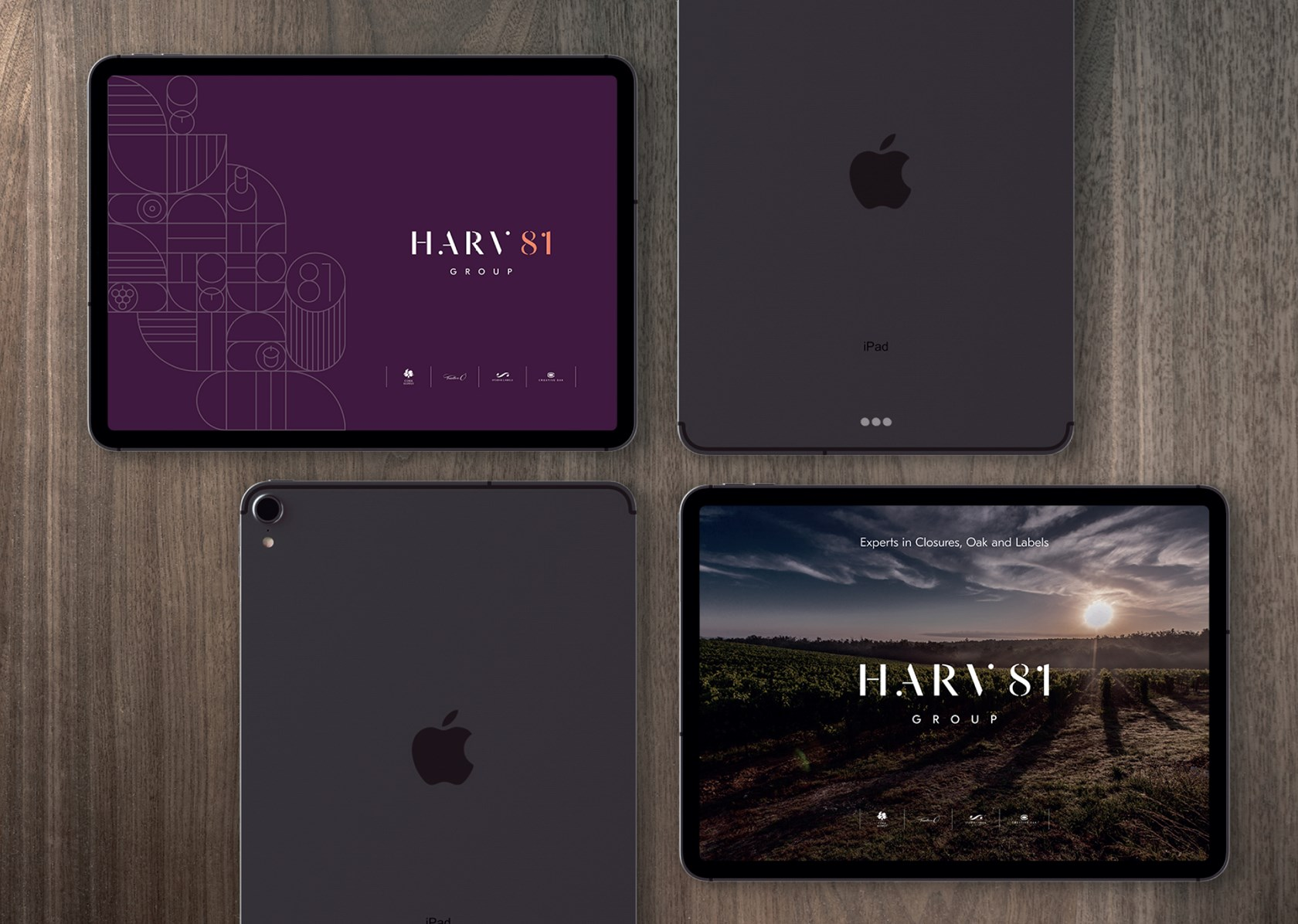 Harv81group Banners Website 09